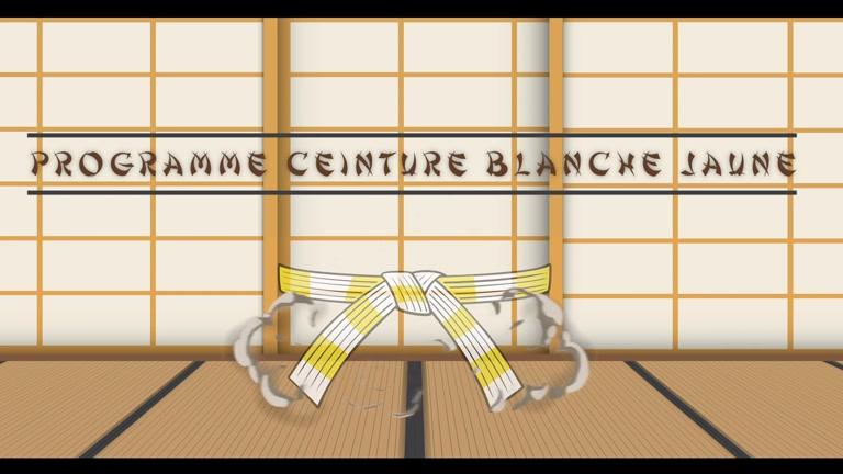 PROGRAMME JUDO CEINTURE BLANCHE JAUNE - JE PREPARE MON GRADE