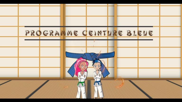PROGRAMME JUDO CEINTURE BLEUE - JE PREPARE MON GRADE