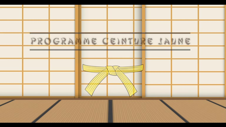 PROGRAMME JUDO CEINTURE JAUNE - JE PREPARE MON GRADE